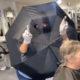 cabeleireira-improvisa-protecao-bizarra-na-holanda